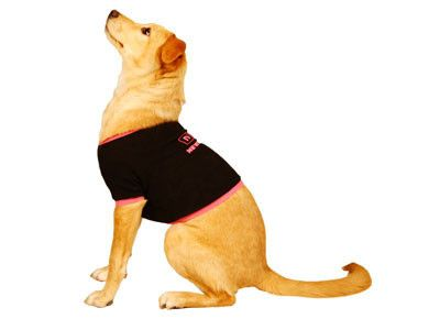 NPR Newshound T-shirt – NPR Shop