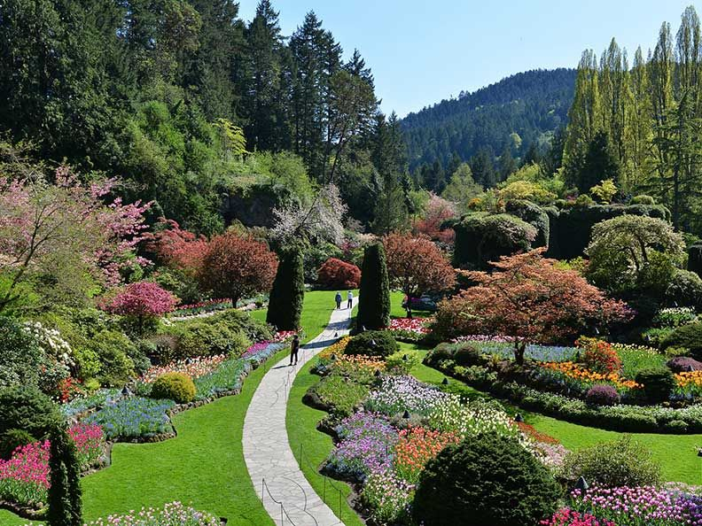 Butchart gardens tour train trip 2018 amazing - Best time to visit butchart gardens ...