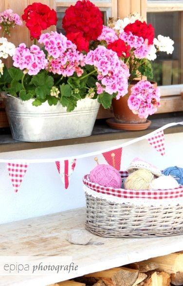 geraniums geranien u vieles pinterest balkon. Black Bedroom Furniture Sets. Home Design Ideas