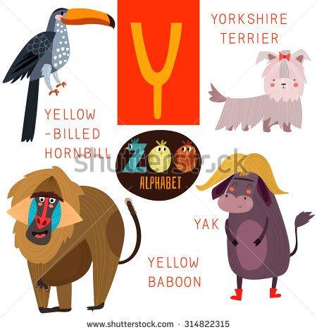 Cute Zoo Alphabet In Vector Y Letter Funny Cartoon Animals Yellow