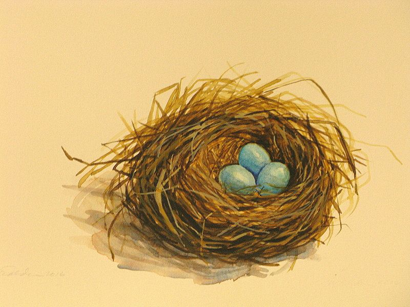 Original Watercolor Bird Nest Painting Nest Of Robins Eggs Spring