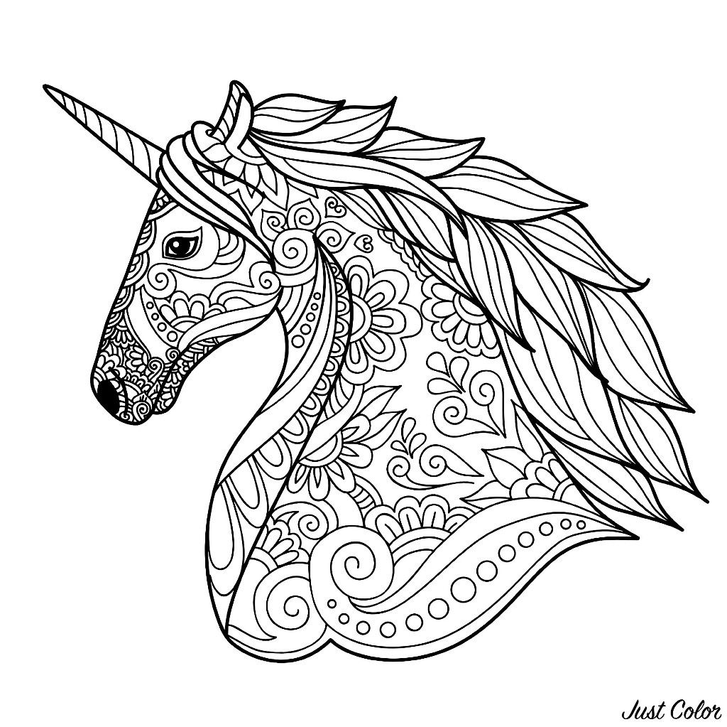 Unicorn S Head Simple Coloring Page Horse Coloring Pages Unicorn Coloring Pages Animal Coloring Pages