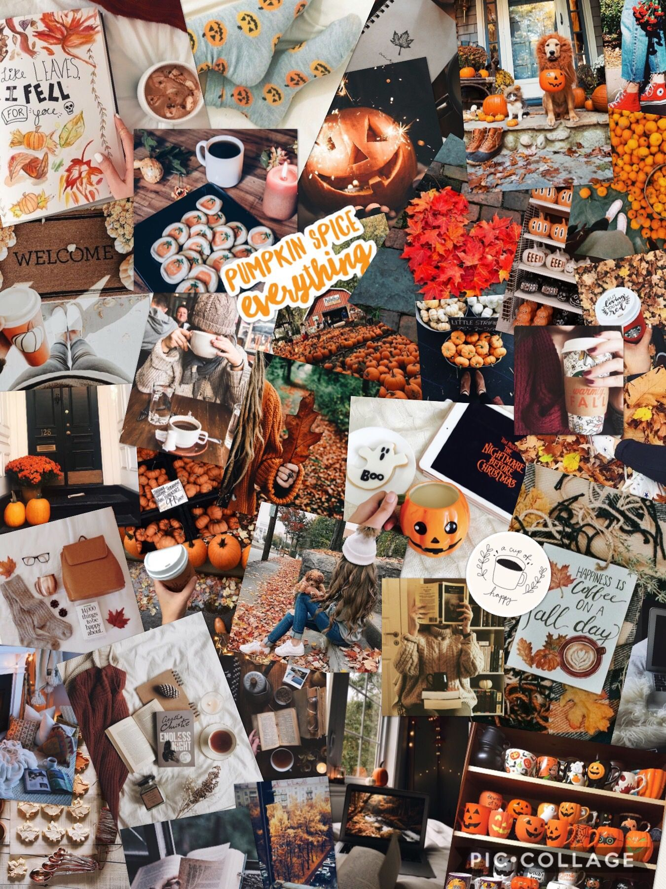 Fall Pictures Fall Collage Love Fall With Images Halloween
