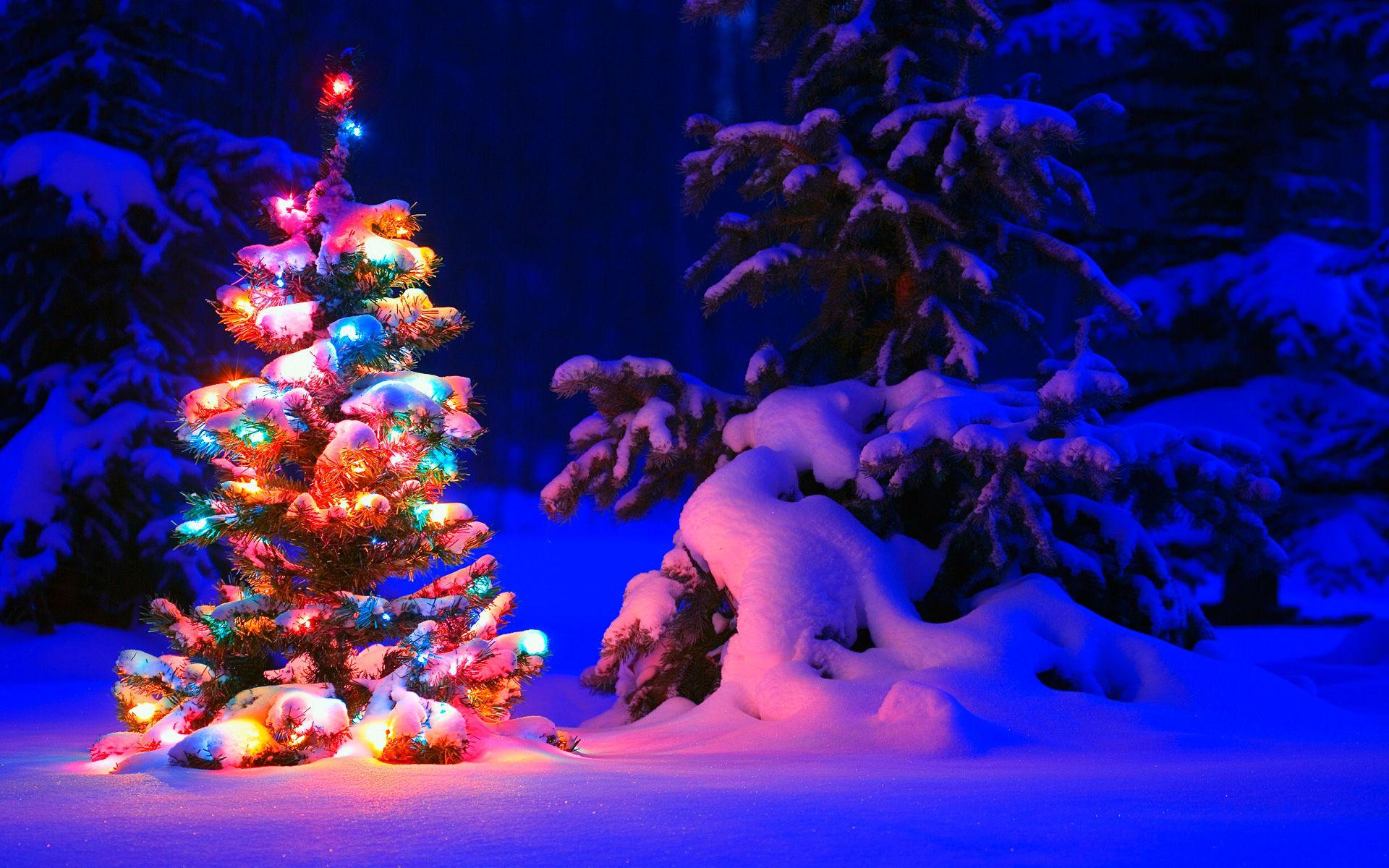 It S Christmas Time Christmas Desktop Snowy Christmas Tree Christmas Wallpaper Free