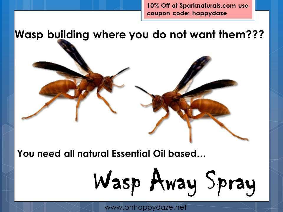 Wasp Away Spray Wasp, Natural essential oils, Homestead