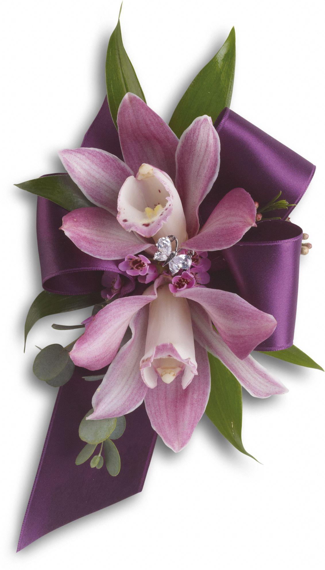 Cymbidium Orchid Wrist Corsages: Corsage Wedding, Prom Flowers