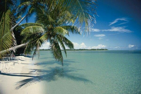 Love Key Largo Beaches