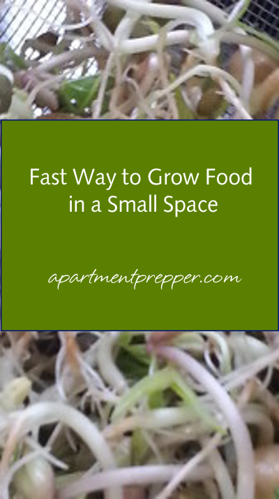 Fast way to grow food in small space