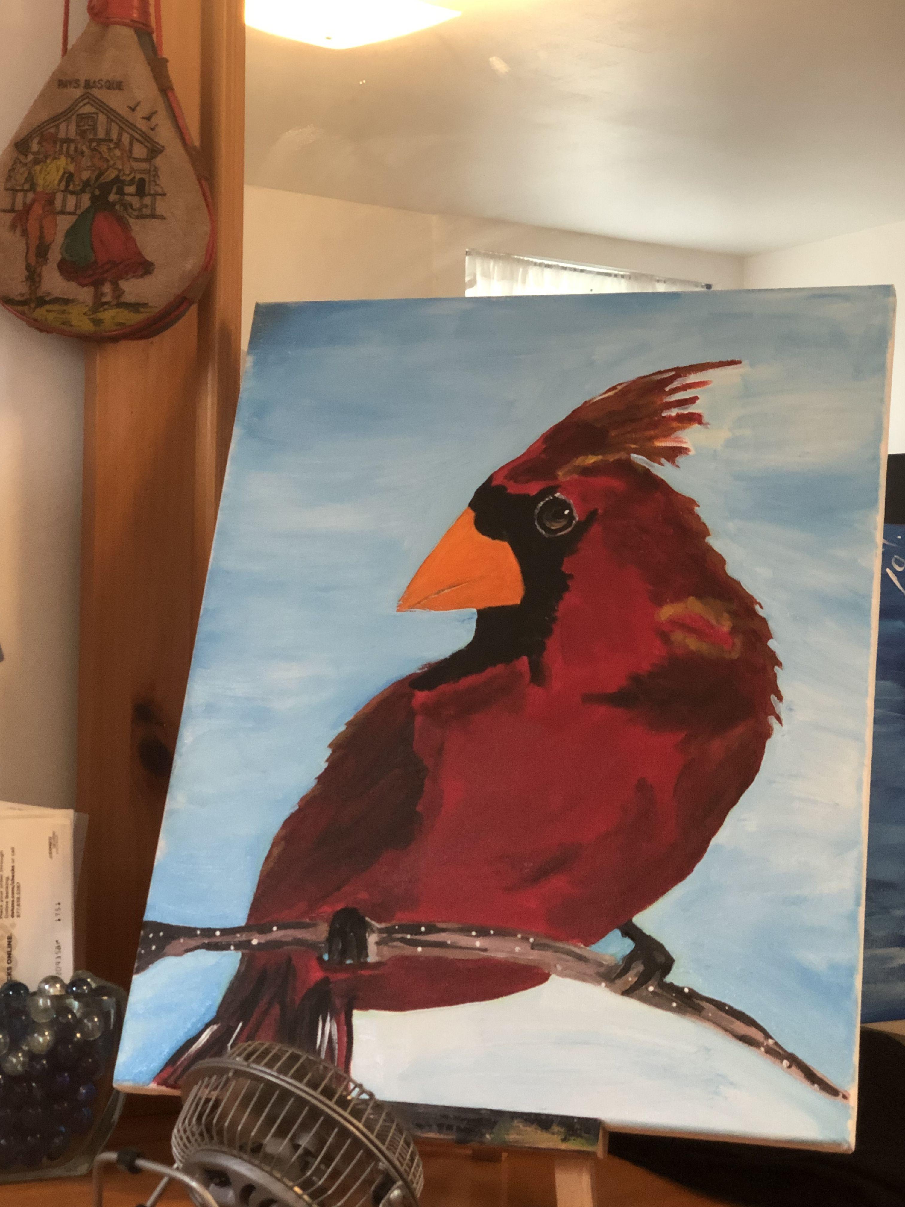 Cardinal Canvas Flat Dragon Pictures Cool Drawings Bird Art
