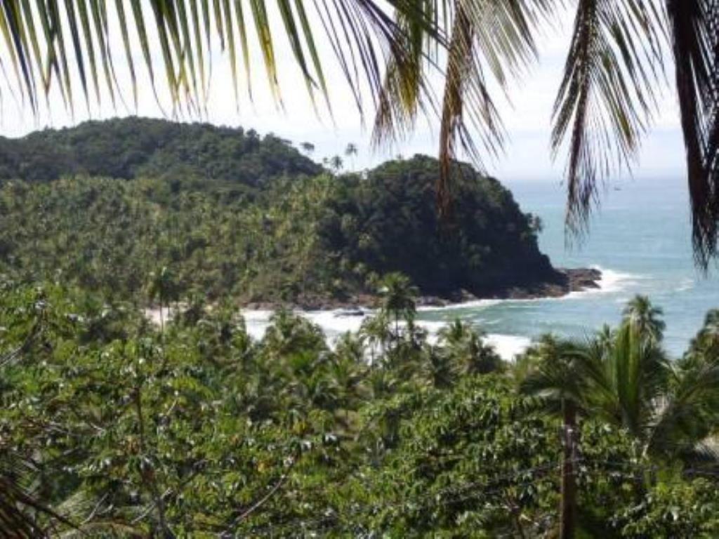 Esta pequena vila de pescadores com suas paisagens naturais de Mata Atlântica e praias virgens isoladas, será uma experiência que poucos outros lugares na Bahia podem oferecer.