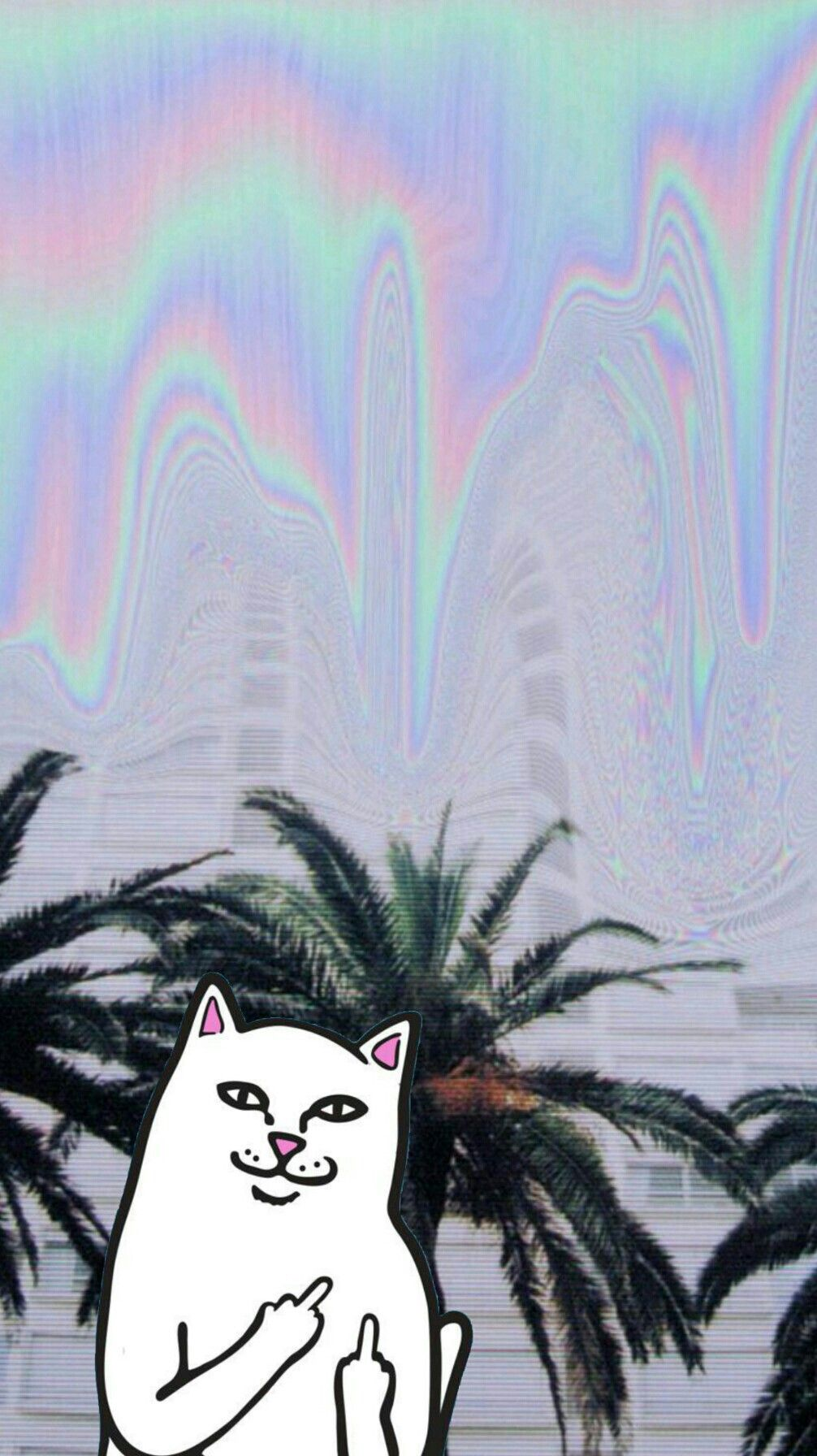 Versace iphone wallpaper tumblr - Ripndip Iphone Wallpaper Ripndip Middle Finger Cat Wallpaper Iphone