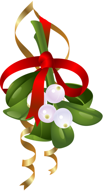mistletoe clip art 11 mistletoe clip art free cliparts that you rh pinterest co uk clipart mistletoe christmas clipart mistletoe
