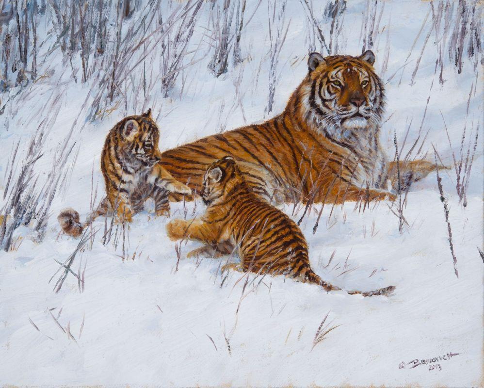 Pin Norma Vazquez Tigers And Animals Wildlife Big Cats Art