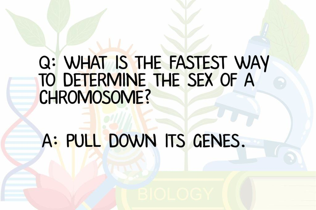 20 Funny Science Jokes According To Someone Who Once Got A B Minus In Biology In 2020 Funny Science Jokes Science Quotes Funny Science Jokes