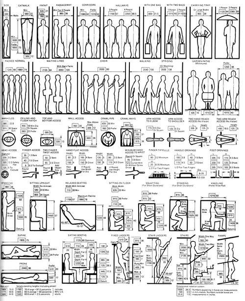 Diagrams Illustrating Ergonomic Design In Relation To The