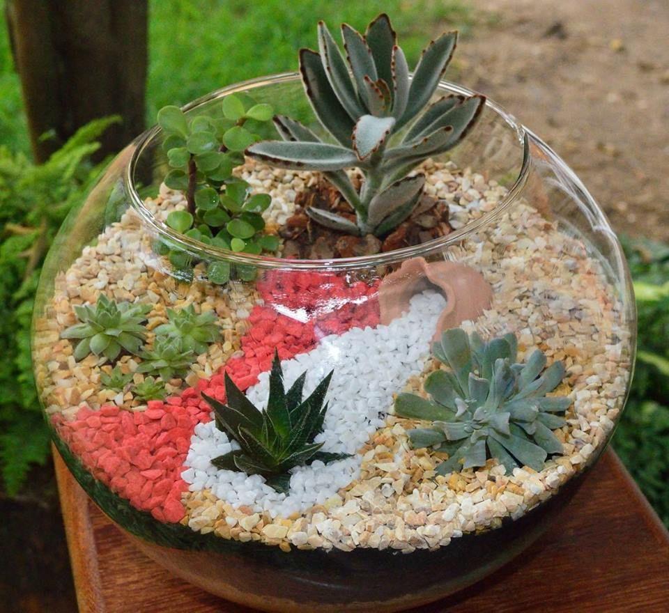 Construindo Minha Casa Clean: Mini Jardim de Inverno ...
