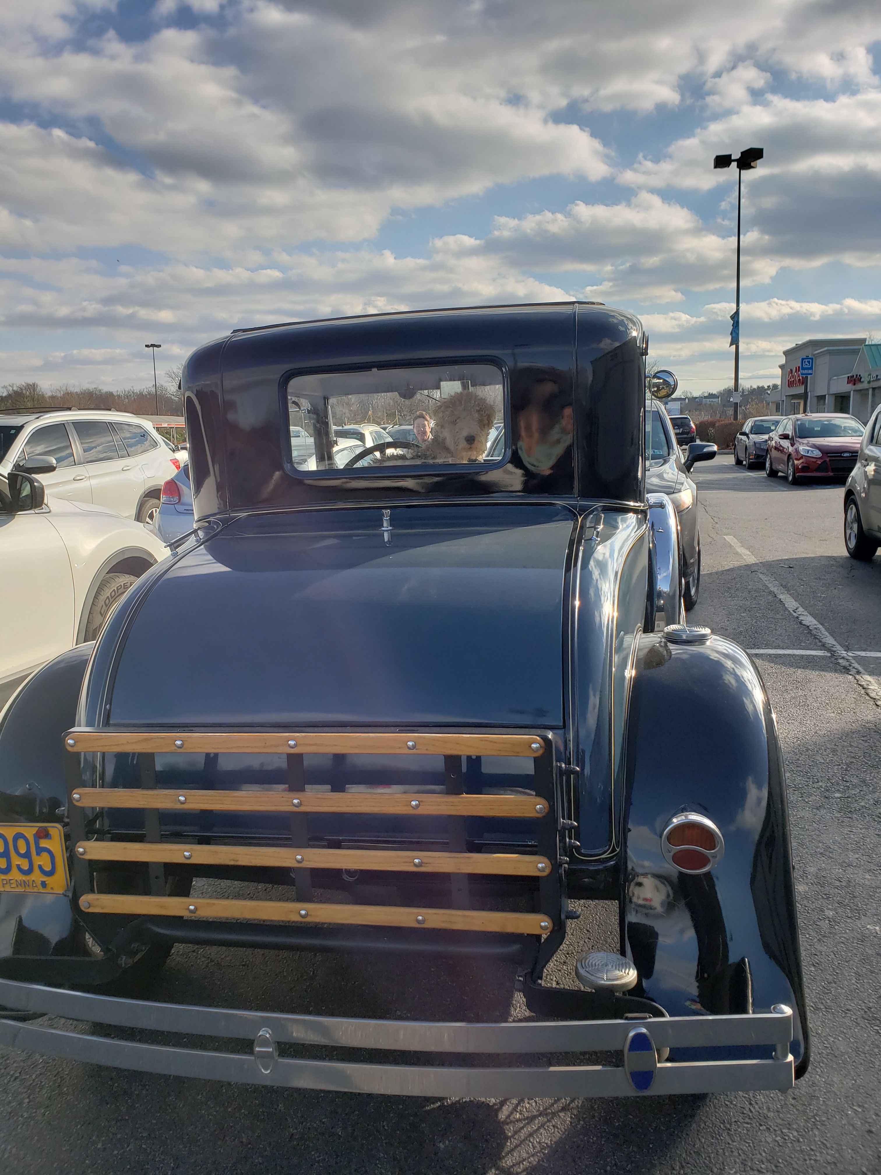 Carspot Dogspot Photobomb Kennettsquare Chestercounty