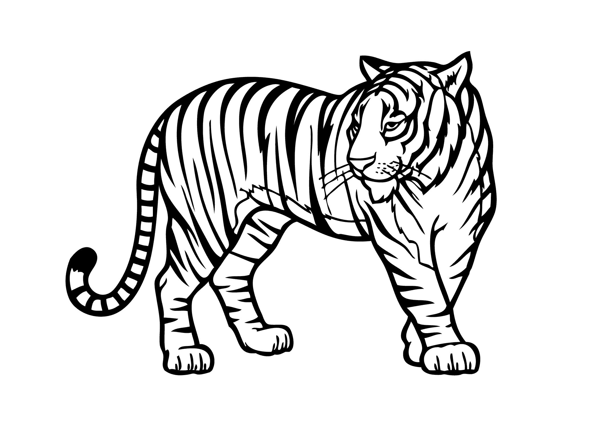 Tiger Coloring Pages And Tiger Wild Animals Coloring Pages For Kids Printable Free