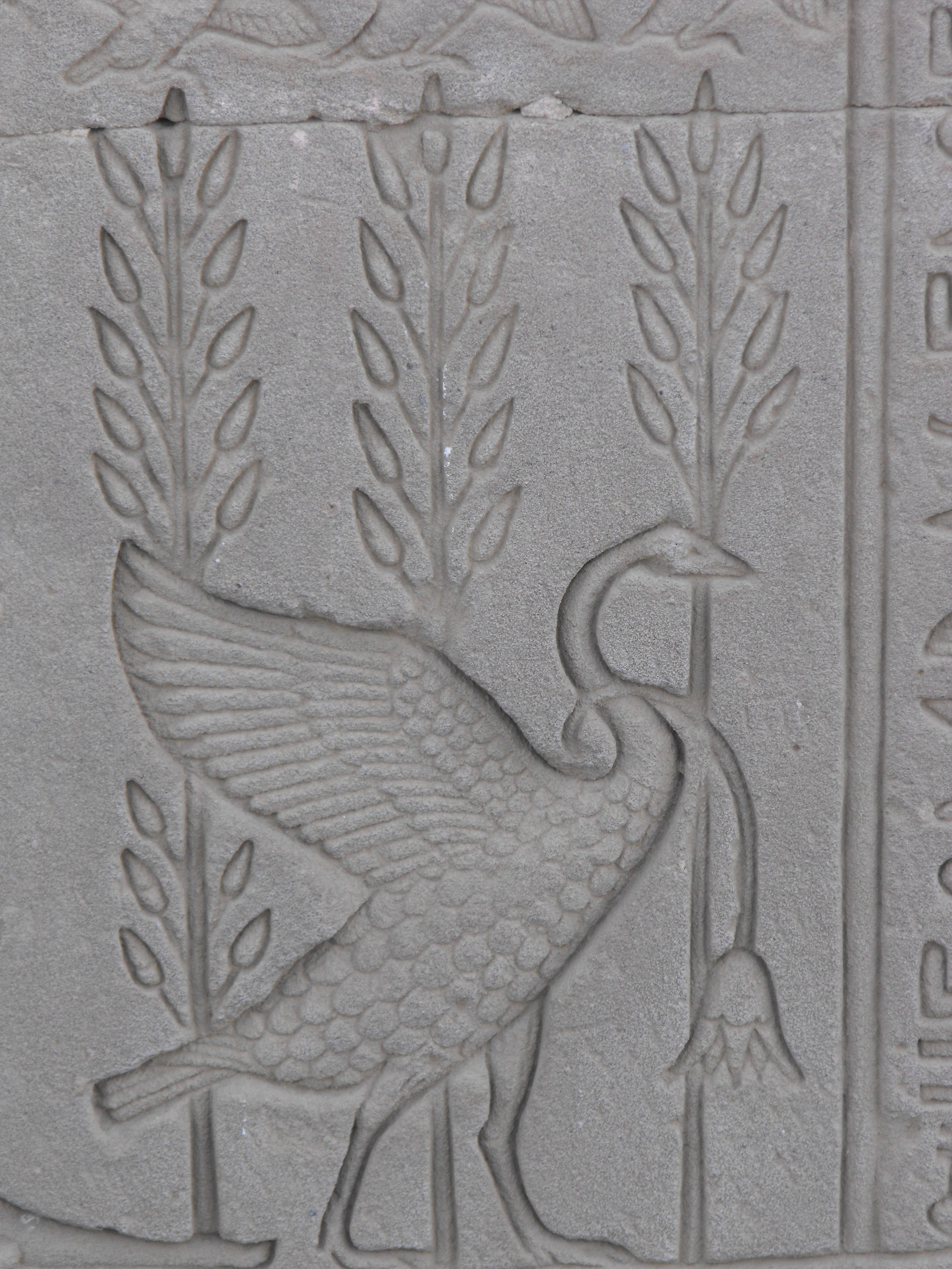 The Arrogant Goose, Hathor's Temple, Dendara, Egypt