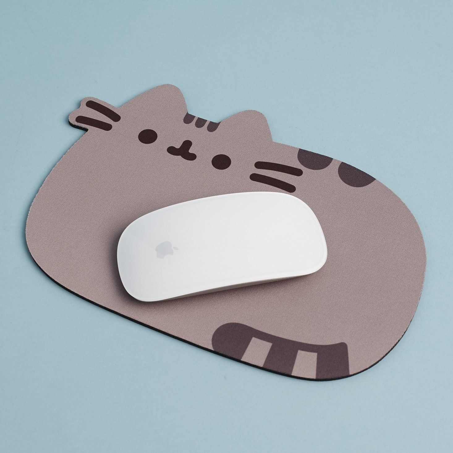 Pusheen Box Subscription Review Spring 2018 in 2020