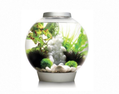 BIORB CLASSIC 30 LED SILVER 30L Aquarium, accent top and