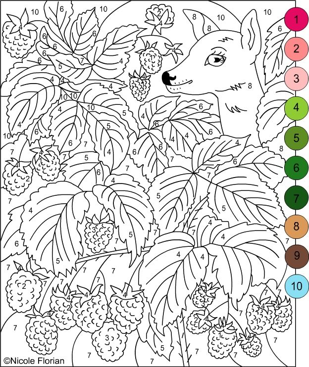 Nicoles Free Coloring Pages Color By Numbers Strawberries And Raspberries Coloring Pages