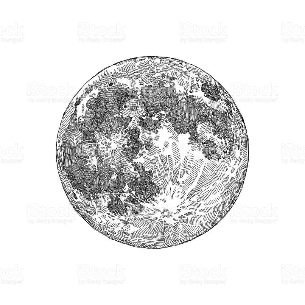 Pin By Haley Franklin On Tatoo Moon Sketches Moon Drawing Vector Art