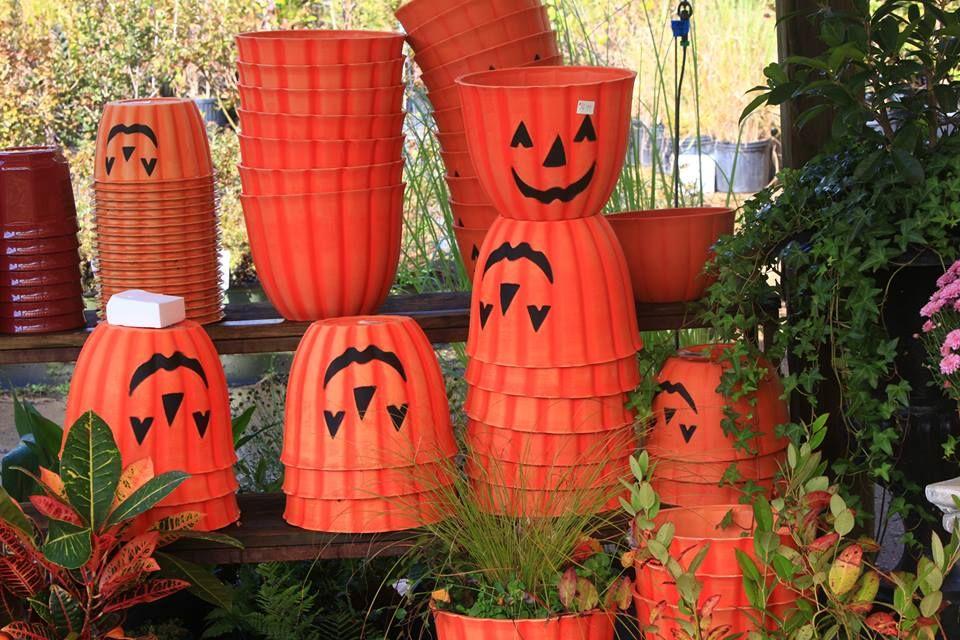 Jackolantern flower pots at garden shop near Trenton, GA