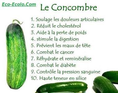 bienfaits du concombre infos sur les aliments sp cifique. Black Bedroom Furniture Sets. Home Design Ideas