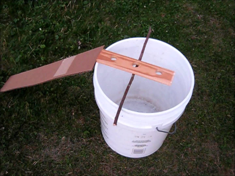Chipmunk rodent bucket trap http youtu be aoryegsaqa