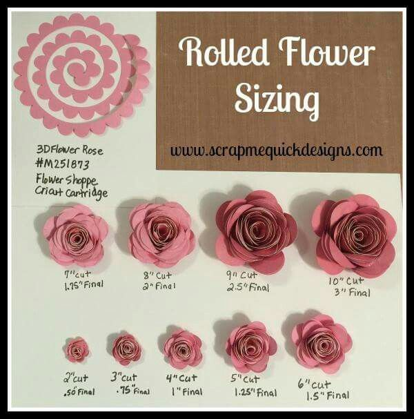 Rolled paper flower sizing chart. Cricut paper flowers | Flower shadow box, Paper flower ...