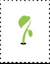 Courgettes nemen veel ruimte in. Teveel voor een kleine tuin. Behalve in de Makkelijke Moestuin; daar laat je ze gewoon omhoog klimmen!
