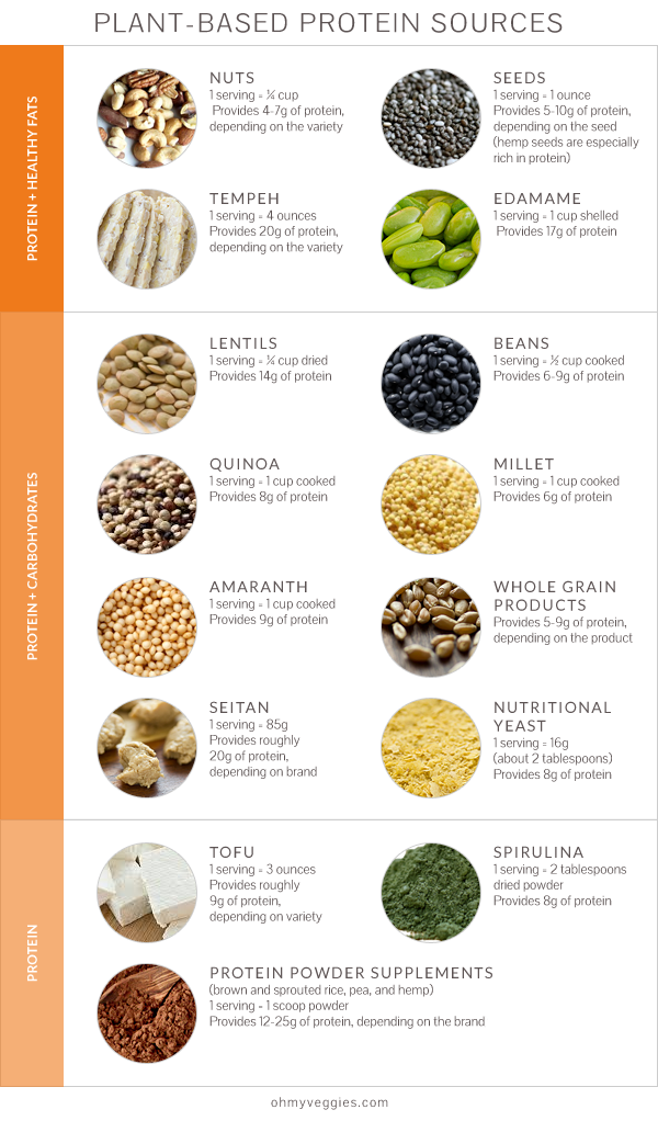 Plant Protein A Nutrition Q&A About Plant Protein