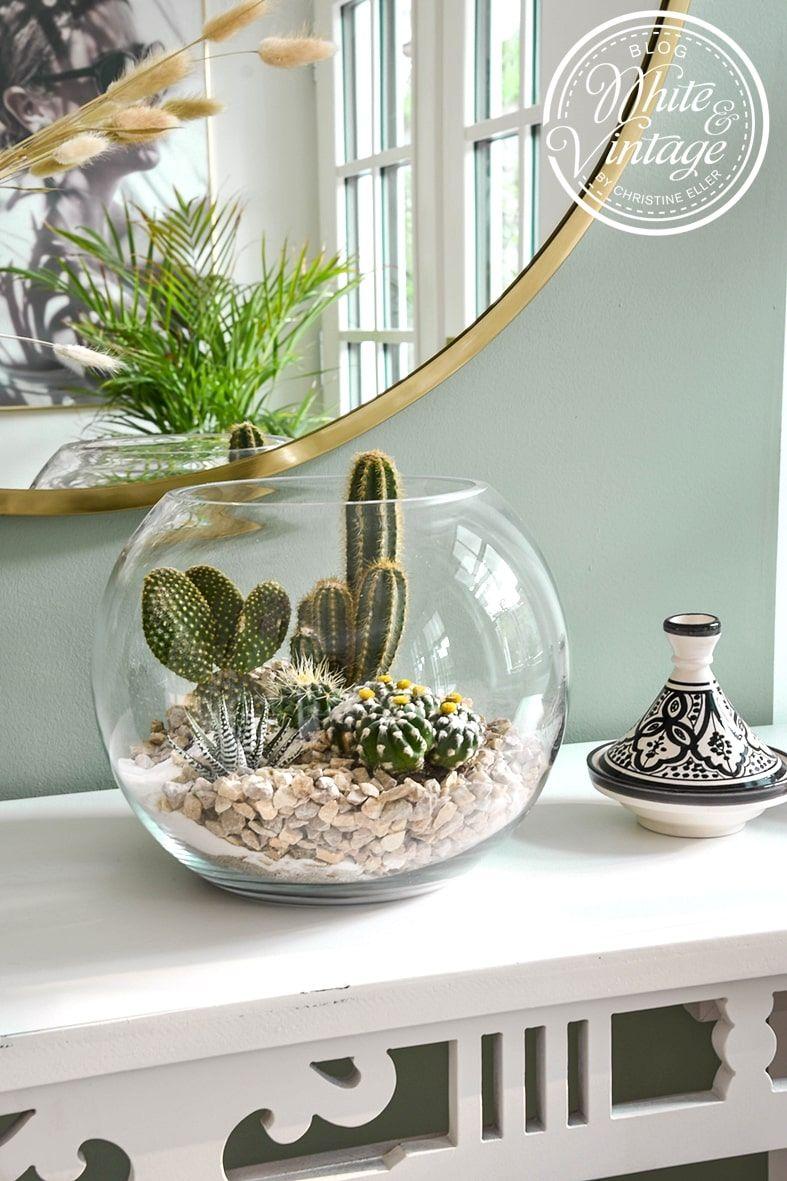 Kaktus-Deko - Kakteen im Glas