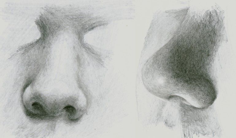 How to draw a realistic nose video | Share Today's Craft ...