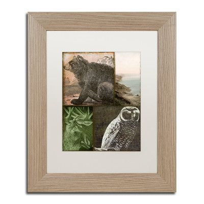 """Trademark Art 'Cabela III' by Color Bakery Framed Graphic Art Size: 14"""" H x 11"""" W x 0.5"""" D, Mat Color: White"""