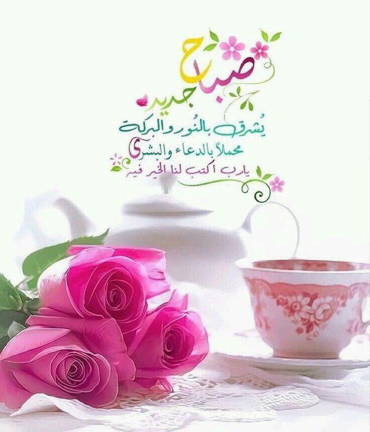 Pin By الامل بالله On ص بـــاح ــــات وم ســـاءات Good Morning Images Flowers Good Night Messages Morning Greeting
