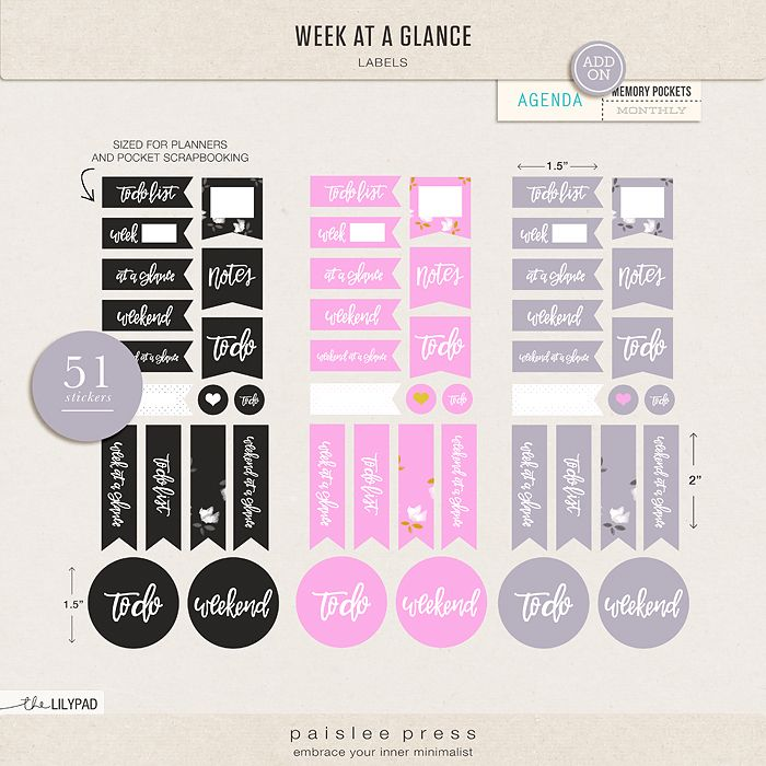 Week At A Glance Journal Cards by paislee press