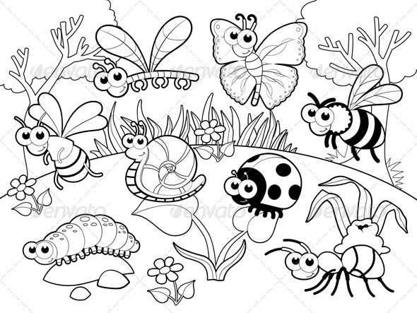 7700 Coloring Pages Summer Animals Download Free Images