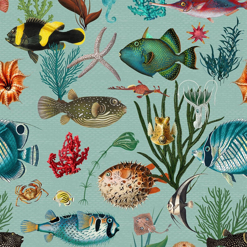 Ocean Fish Wallpaper Duck Egg Teal Coral Removable Peel And Stick Self Adhesive Or Prepasted Repositionable Easy Install Woven Custom Sizes In 2021 Fish Wallpaper Wallpaper Teal Coral