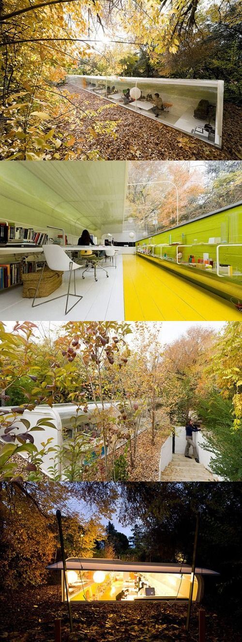 Modern office in natural environment.