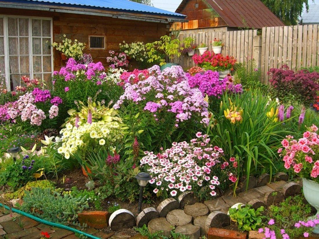Цветники и клумбы своими руками на даче фото цветущее всё лето фото фото 527