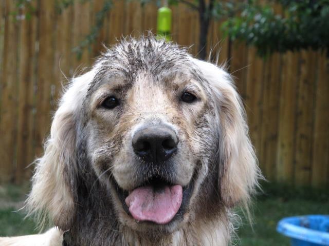 Got into some mud, Mom. Did I get any on my face?