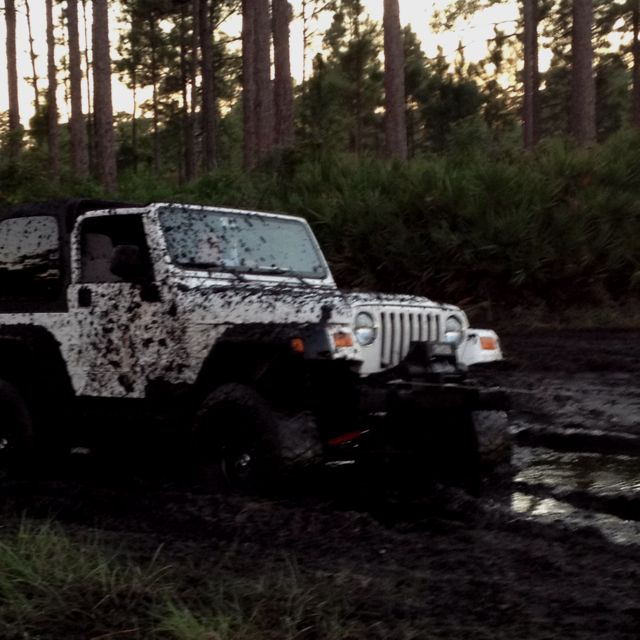Mudding White Jeep Mud Trucks Mudding