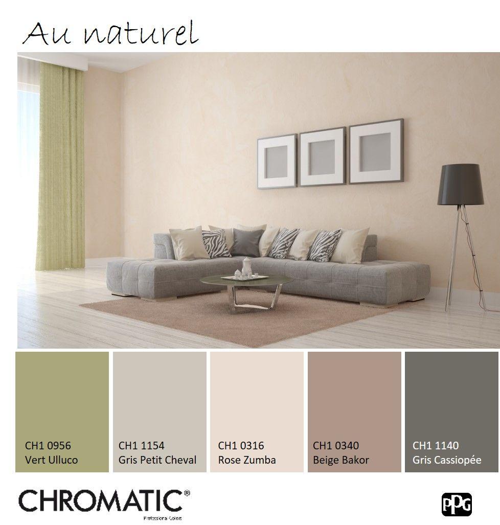 Cette association de diff rentes tonalit s de beige et de ce vert mousse est parfait pour for Peinture murale gris beige