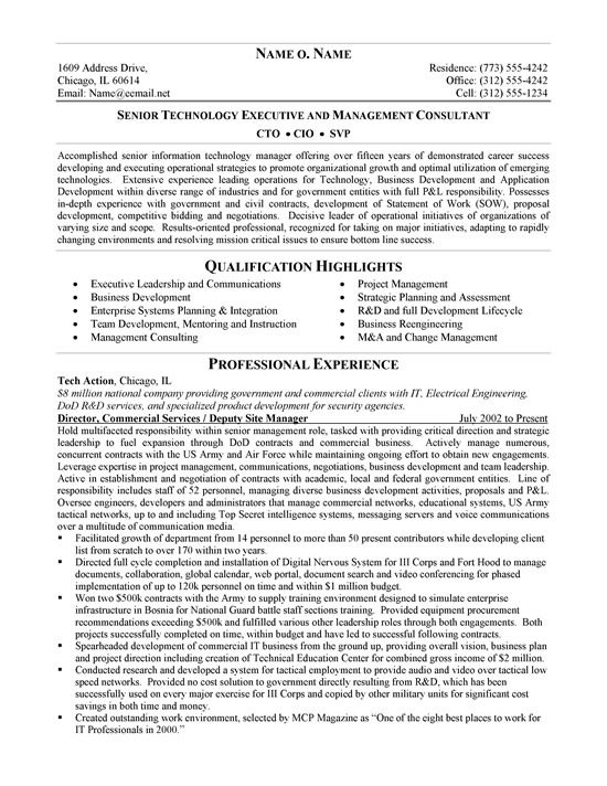 cto resume example sample resumes pinterest resume examples