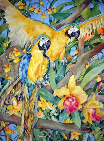 Parrots by Jan Ford ~ tropical art