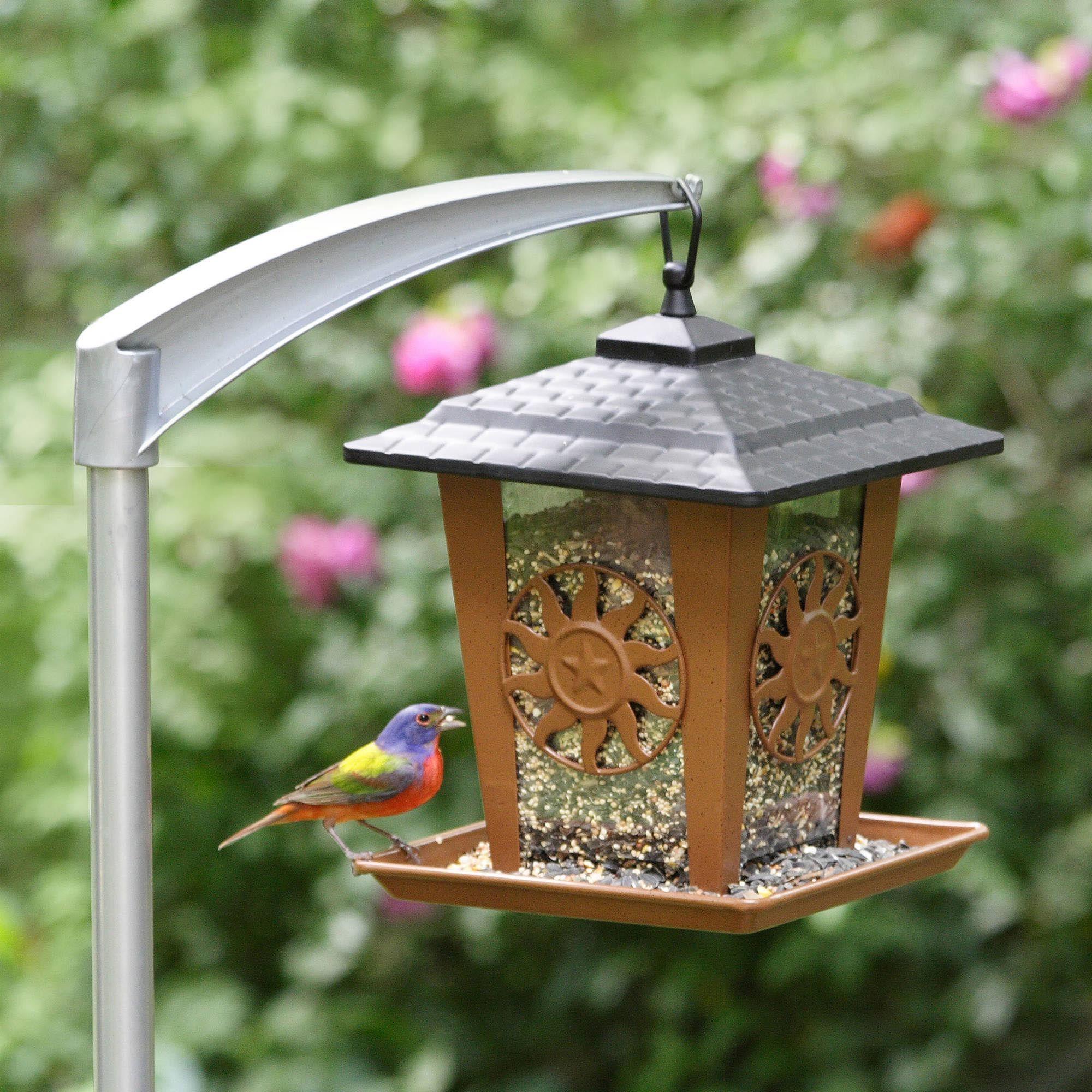 Copper bird feeder pole bird feeder poles bird feeders