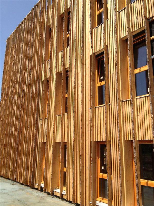fa ades ossature bois isolation fibre de bois et bardage vertical en m l ze brut arve. Black Bedroom Furniture Sets. Home Design Ideas