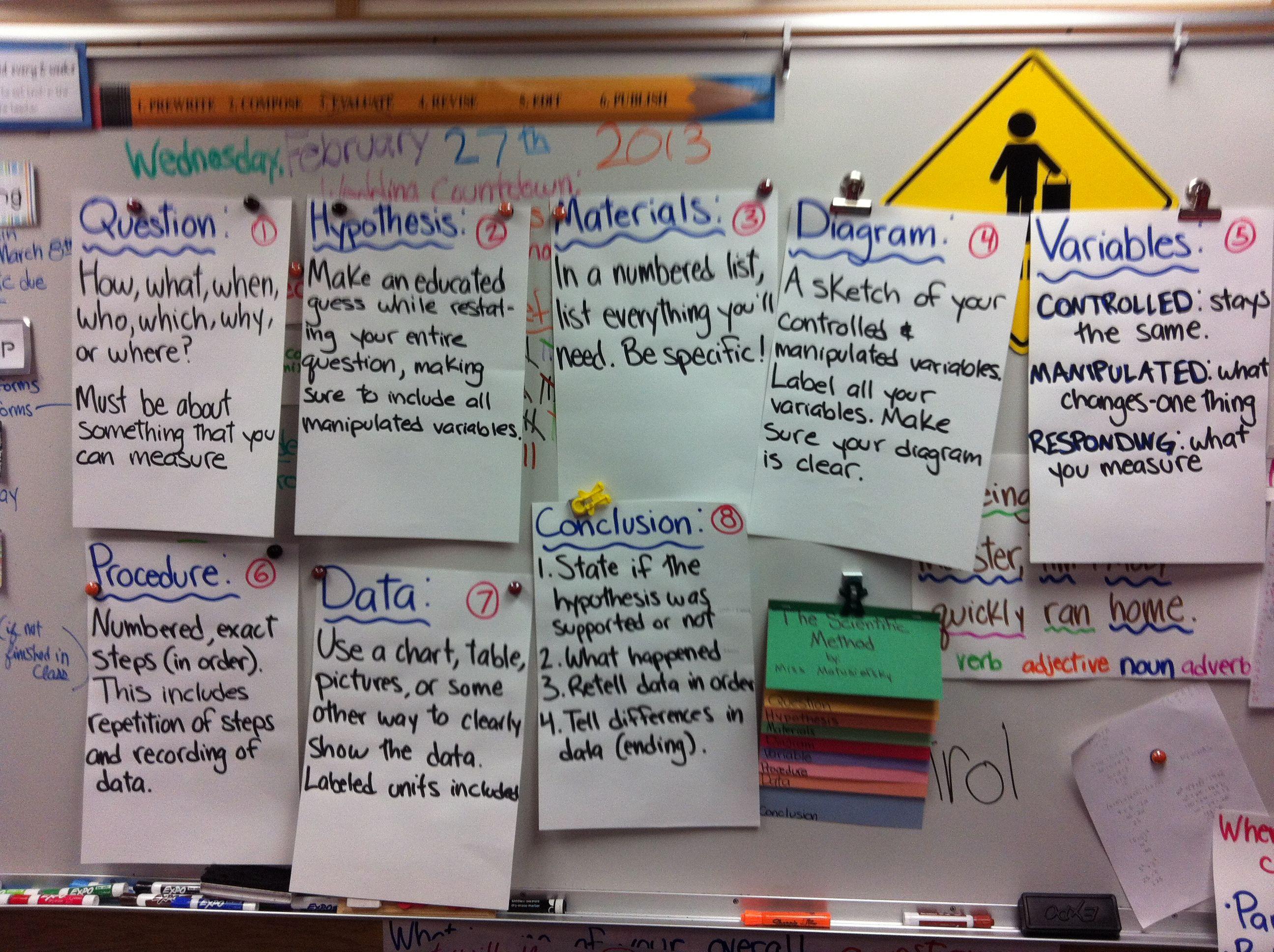 Scientific Method Posters 5th Grade